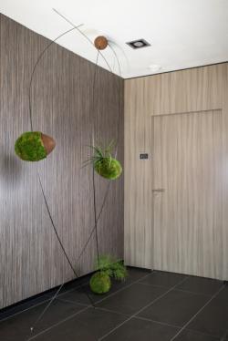 Tableau végétal, la décoration vivante et écologique